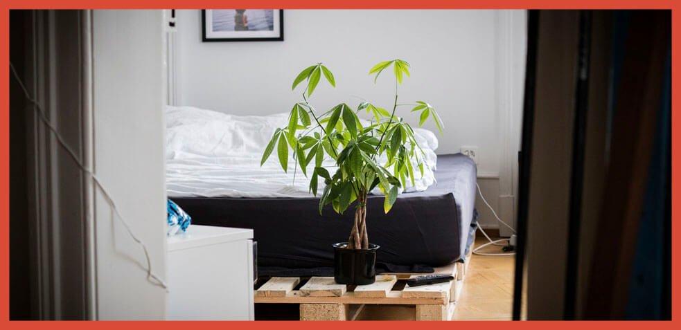 como elegir un colchón